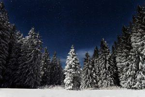 Schnee-Nachts